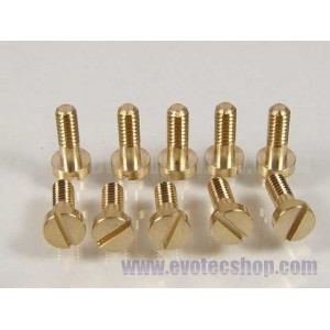 Tornillos basculantes 2,2 x 6,5 mm (x 10)